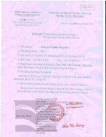 Báo cáo tài chính hợp nhất quý 1 năm 2013 - Công ty Cổ phần Sông Đà 2