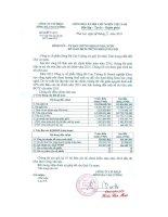 Báo cáo tài chính năm 2015 (đã kiểm toán) - Công ty Cổ phần Sông Đà Cao Cường