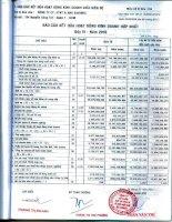 Báo cáo KQKD hợp nhất quý 4 năm 2010 - Công ty Cổ phần Hợp tác kinh tế và Xuất nhập khẩu SAVIMEX