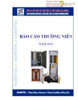 Báo cáo thường niên năm 2012 - Công ty cổ phần Vật liệu Điện và Viễn thông Sam Cường