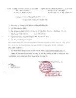 Báo cáo tài chính năm 2010 (đã kiểm toán) - Công ty Cổ phần Đầu tư và Xây lắp Sông Đà