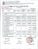 Báo cáo KQKD quý 2 năm 2010 - Công ty Cổ phần Đầu tư và Phát triển Sacom