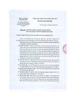 Báo cáo tài chính hợp nhất quý 1 năm 2015 - Công ty Cổ phần Sơn Hà Sài Gòn
