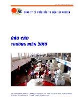 Báo cáo thường niên năm 2010 - Công ty Cổ phần Đầu tư Điện Tây Nguyên