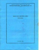 Báo cáo thường niên năm 2013 - Công ty cổ phần Chế tác Đá Việt Nam