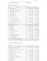 Báo cáo tài chính quý 2 năm 2009 - Công ty Cổ phần Địa ốc Chợ Lớn