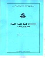 Báo cáo tài chính công ty mẹ quý 2 năm 2013 - Công ty cổ phần Gang thép Thái Nguyên