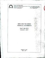 Báo cáo tài chính quý 2 năm 2011 - Công ty Cổ phần S.P.M