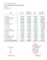 Báo cáo KQKD quý 4 năm 2013 - Công ty cổ phần Mía đường Thành Thành Công Tây Ninh