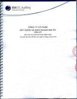 Báo cáo tài chính năm 2013 (đã kiểm toán) - Công  ty Cổ phần Xây dựng và Kinh doanh Địa ốc Tân Kỷ