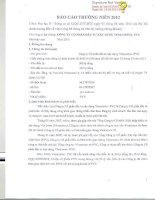 Báo cáo thường niên năm 2012 - Công ty Cổ phần Đầu tư Xây dựng Vinaconex - PVC