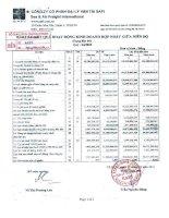 Báo cáo tài chính hợp nhất quý 4 năm 2010 - Công ty Cổ phần Đại lý Vận tải SAFI