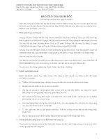 Báo cáo tài chính năm 2011 (đã kiểm toán) - Công ty Cổ phần Chế tạo Kết cấu Thép VNECO.SSM