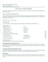 Báo cáo tài chính quý 2 năm 2012 (đã soát xét) - Công ty Cổ phần Sadico Cần Thơ