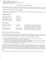 Báo cáo tài chính năm 2008 (đã kiểm toán) - Công ty Cổ phần Sara Việt Nam
