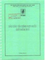 Báo cáo tài chính hợp nhất quý 2 năm 2011 - Tổng công ty Cổ phần Vận tải Dầu khí