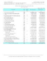 Báo cáo tài chính quý 2 năm 2010 - Công ty Cổ phần Tập đoàn Sara