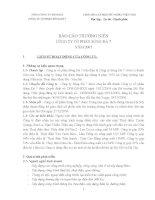 Báo cáo thường niên năm 2007 - Công ty Cổ phần Sông Đà 7