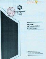 Báo cáo tài chính công ty mẹ quý 1 năm 2014 - Công ty Cổ phần Tập đoàn Đầu tư Thăng Long