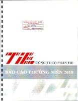 Báo cáo thường niên năm 2010 - Công ty Cổ phần TIE