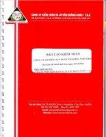Báo cáo tài chính công ty mẹ năm 2012 (đã kiểm toán) - Công ty Cổ phần Tập đoàn Thái Hòa Việt Nam