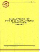 Báo cáo thường niên năm 2013 - Công ty cổ phần Vận chuyển Sài Gòn Tourist