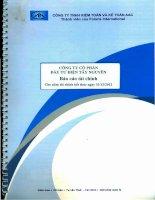 Báo cáo tài chính năm 2012 (đã kiểm toán) - Công ty Cổ phần Đầu tư Điện Tây Nguyên