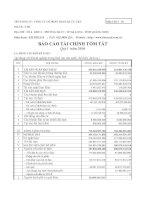Báo cáo tài chính quý 1 năm 2010 - Công ty cổ phần Than Hà Tu - Vinacomin