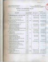 Báo cáo tài chính quý 2 năm 2007 - Công ty Cổ phần Xi măng Sài Sơn