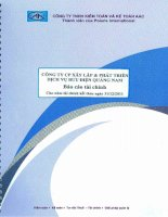 Báo cáo tài chính năm 2011 (đã kiểm toán) - CTCP Đầu tư Xây dựng và Phát triển Hạ tầng Viễn thông