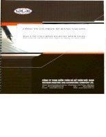 Báo cáo tài chính năm 2009 (đã kiểm toán) - Công ty Cổ phần Xi măng Sài Sơn
