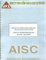 Báo cáo tài chính năm 2009 (đã kiểm toán) - Công ty Cổ phần Khoáng sản Sài Gòn - Quy Nhơn