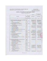 Báo cáo tài chính hợp nhất quý 1 năm 2013 - Công ty Cổ phần Giống cây trồng Miền Nam