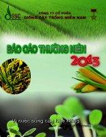 Báo cáo thường niên năm 2013 - Công ty Cổ phần Giống cây trồng Miền Nam