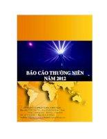 Báo cáo thường niên năm 2012 - Công ty Cổ phần Sara Việt Nam