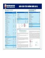 Báo cáo tài chính hợp nhất năm 2012 (đã kiểm toán) - Ngân hàng Thương mại Cổ phần Sài Gòn
