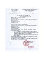 Báo cáo tài chính hợp nhất quý 4 năm 2015 - Công ty Cổ phần Sơn Hà Sài Gòn