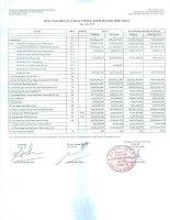 Báo cáo KQKD hợp nhất quý 4 năm 2010 - Công ty Cổ phần Chứng khoán Ngân hàng Sài Gòn Thương Tín