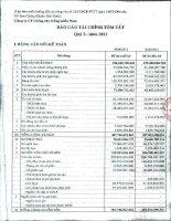 Báo cáo tài chính công ty mẹ quý 2 năm 2011 - Công ty Cổ phần Giống cây trồng Miền Nam
