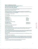 Báo cáo tài chính năm 2011 (đã kiểm toán) - Công ty Cổ phần Sadico Cần Thơ
