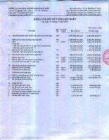 Báo cáo tài chính hợp nhất quý 4 năm 2011 - Công ty cổ phần Chứng khoán Sài Gòn