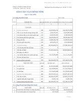 Báo cáo tài chính quý 4 năm 2009 - Công ty Cổ phần Xi măng Sài Sơn