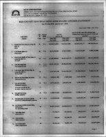 Báo cáo KQKD quý 3 năm 2010 - Công ty Cổ phần S.P.M