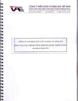 Báo cáo tài chính năm 2011 (đã kiểm toán) - Công ty Cổ phần Xây lắp và Đầu tư Sông Đà