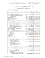 Báo cáo tài chính quý 4 năm 2009 - Công ty Cổ phần Sông Đà 6.06