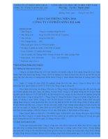Báo cáo thường niên năm 2010 - Công ty Cổ phần Sông Đà 6.06