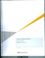 Báo cáo tài chính năm 2012 (đã kiểm toán) - Công ty cổ phần Sợi Thế Kỷ