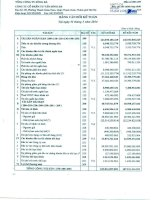 Báo cáo tài chính hợp nhất quý 1 năm 2014 - Công ty Cổ phần Tư vấn Sông Đà