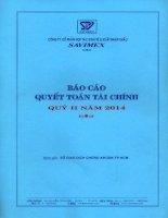 Báo cáo tài chính quý 2 năm 2014 - Công ty Cổ phần Hợp tác kinh tế và Xuất nhập khẩu SAVIMEX