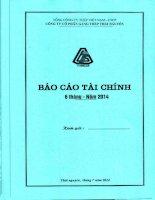 Báo cáo tài chính công ty mẹ quý 2 năm 2014 - Công ty cổ phần Gang thép Thái Nguyên